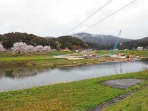 18山陰道工事に桜4.4