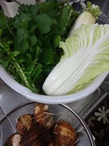 葉付ダイコン、白菜、里芋